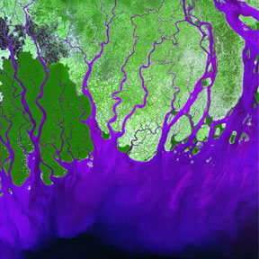 The Ganges Delta