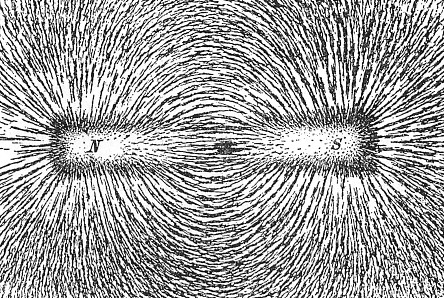Iron filings showing magnetic field lines.